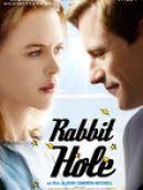 Télécharger Rabbit Hole