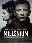 Télécharger Millénium - Les Hommes Qui N'aimaient Pas Les Femmes
