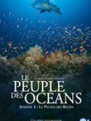 Télécharger Le peuple des oceans : Episode 3 - Le peuple des Récifs