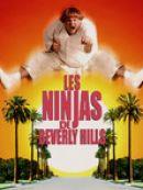 Télécharger Les Ninjas De Beverly Hills