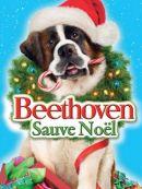 Télécharger Beethoven Sauve Noël