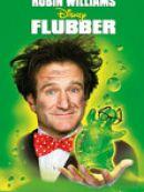 Télécharger Flubber