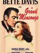 Télécharger Le Grand Mensonge (The Great Lie)