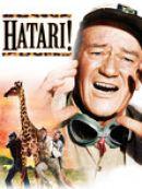 Télécharger Hatari!