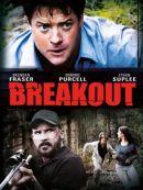 Télécharger Breakout (2013)
