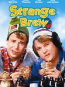 Télécharger Strange Brew