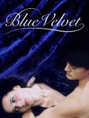 Télécharger Blue Velvet