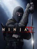 Télécharger Ninja 2: Shadow of a Tear