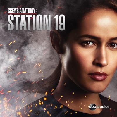 Grey's Anatomy: Station 19, Saison 2 (VOST) torrent magnet