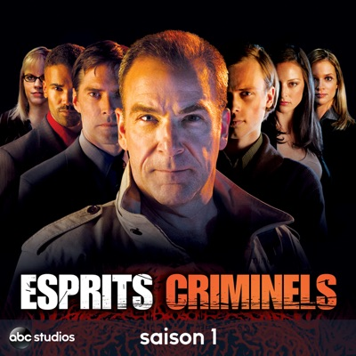 t l charger esprits criminels saison 1 22 pisodes. Black Bedroom Furniture Sets. Home Design Ideas