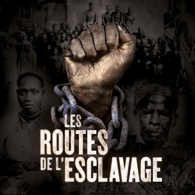 Les routes de l'esclavage torrent magnet