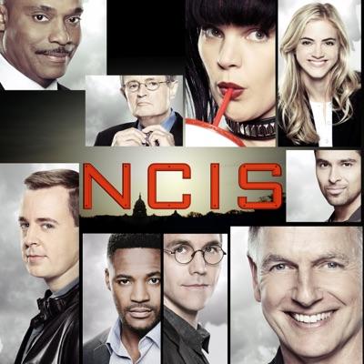 NCIS, Saison 15 torrent magnet