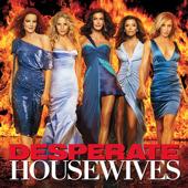 Desperate Housewives, Season 4 torrent magnet