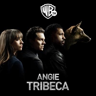 Angie Tribeca, Saison 1 (VF) torrent magnet