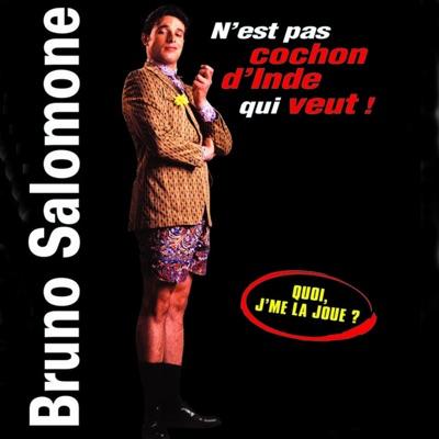 Bruno Salomone - N'est pas cochon d'Inde qui veut torrent magnet