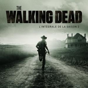The Walking Dead, Saison 2, Partie 1 (VOST) torrent magnet
