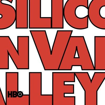 Silicon Valley, Saison 6 (VOST) à télécharger