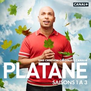 Platane, Saisons 1 à 3 (VF) torrent magnet