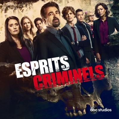 Esprits criminels, Saison 15 (VOST) à télécharger