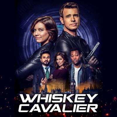 Whiskey Cavalier, Saison 1 (VF) torrent magnet