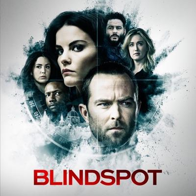 Télécharger Blindspot, Saison 5 (VOST)