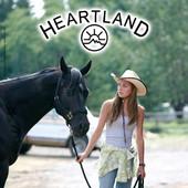 Heartland, Saison 1 torrent magnet