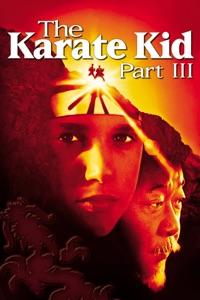 Télécharger Karate Kid- Colección 5 Películas