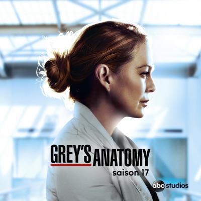 Grey's Anatomy, Saison 17 (VOST) à télécharger