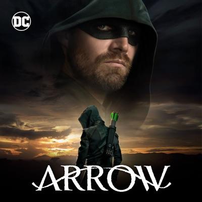 Télécharger Arrow, Saison 8 (VF)