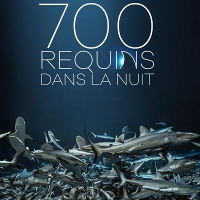 700 requins dans la nuit torrent magnet