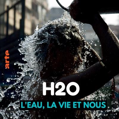 H2O - L'eau, la vie, et nous torrent magnet