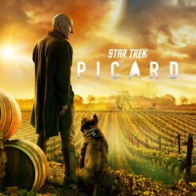 Star Trek: Picard, Season 1 torrent magnet