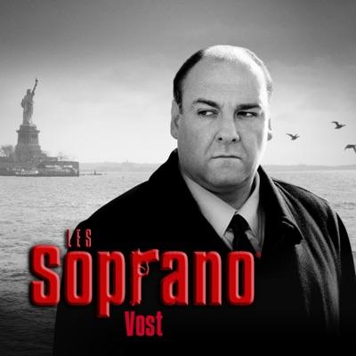 Les Soprano, Saison 6, Partie 2 (VOST) torrent magnet