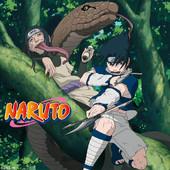 Naruto, Arc 3 : L'examen Chuunin 1 à télécharger
