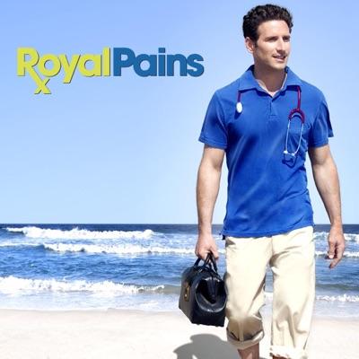 Royal Pains, Saison 1 torrent magnet