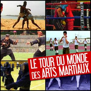 Le tour du monde des arts martiaux torrent magnet