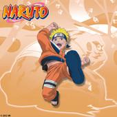 Naruto, Arc 7 : Chuunin Exam 3 à télécharger