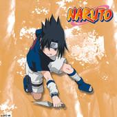 Naruto, Arc 4 : L'examen Chuunin 2 à télécharger
