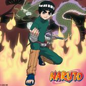 Naruto, Arc 5 : L'épreuve de transition à télécharger