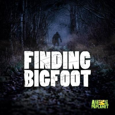 Finding Bigfoot, Season 12 torrent magnet