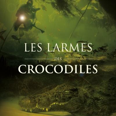 Les larmes des crocodiles torrent magnet