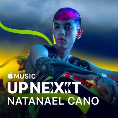 Up Next: Natanael Cano torrent magnet