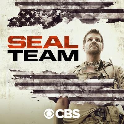 SEAL Team, Season 3 torrent magnet