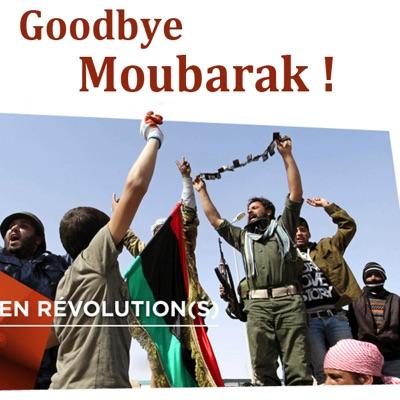 Goodbye Moubarak ! torrent magnet