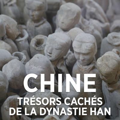 Chine : trésors perdus de la dynastie des Han torrent magnet