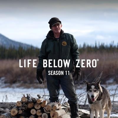 Life Below Zero, Season 11 torrent magnet