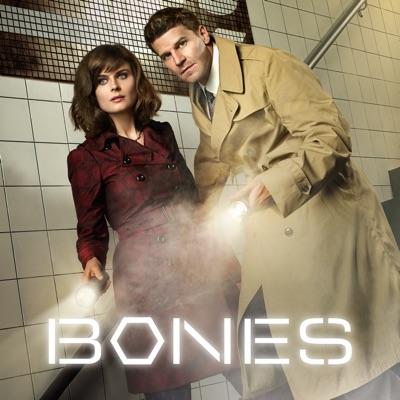 Bones, Saison 7 torrent magnet