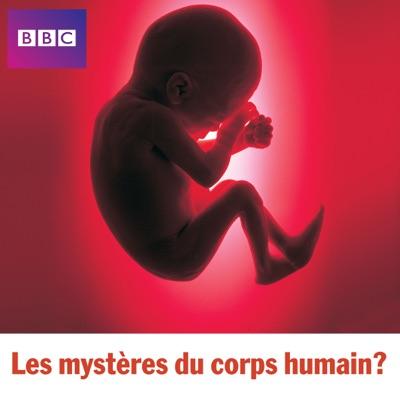 Les mystères du corps humain torrent magnet