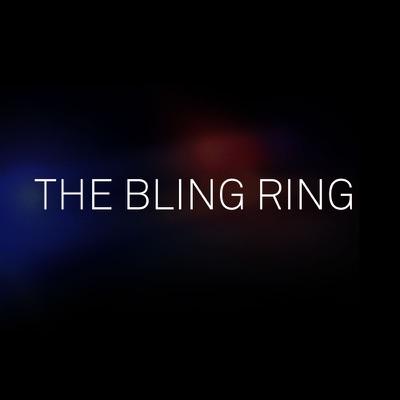 The Bling Ring torrent magnet