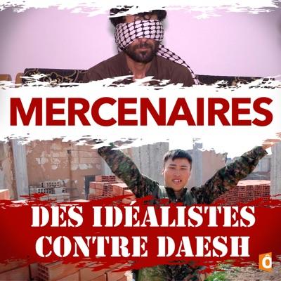 Mercenaires - Des idéalistes contre Daesh torrent magnet